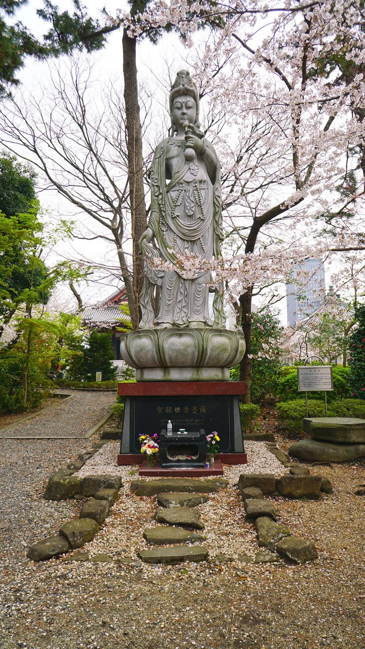 31 марта 2020. Токио, храм Дзодзёдзи, телебашня